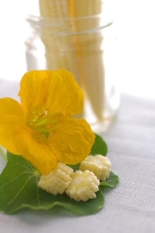 春野菜をコーディネート